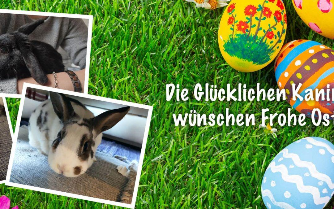 Die Glücklichen Kaninchen wünschen frohe Ostern!