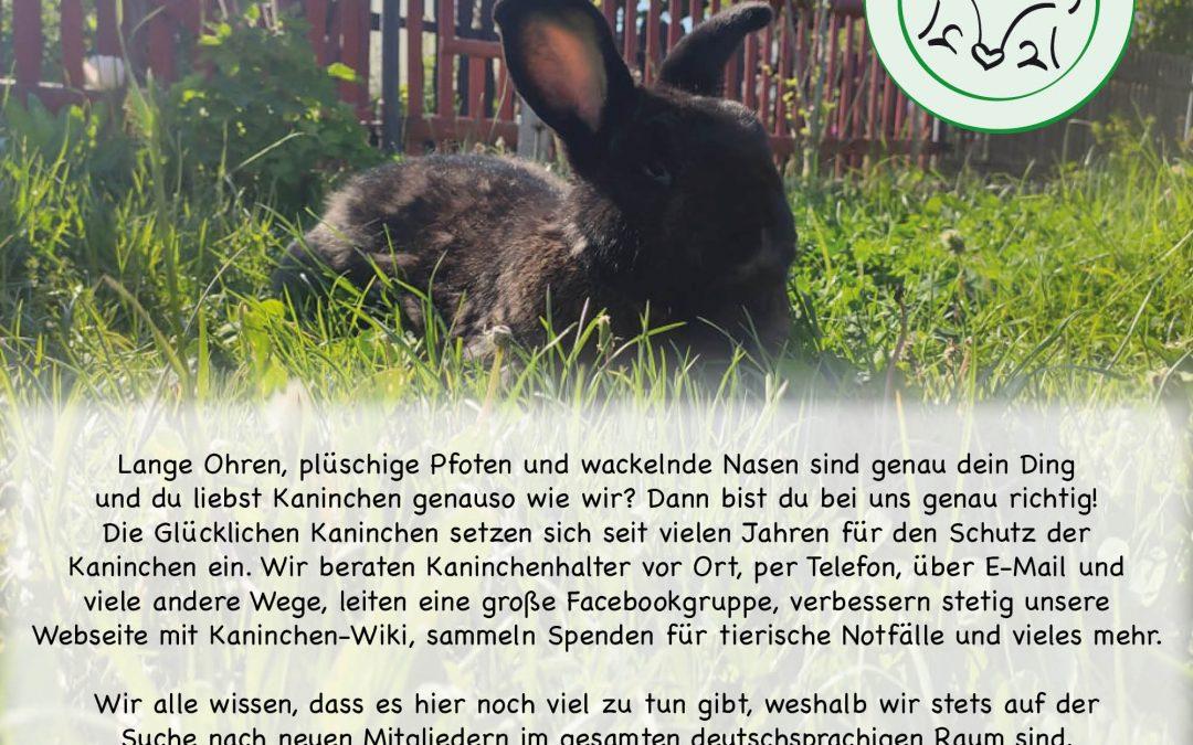Die Glücklichen Kaninchen suchen Unterstützung!
